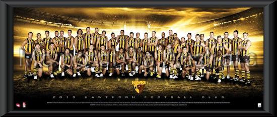 2013 Hawthorn Hawks Team Frame Hawthorn Hawks Afl