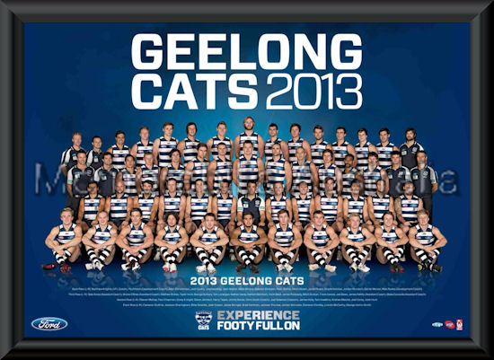 2013 Geelong Cats team frame