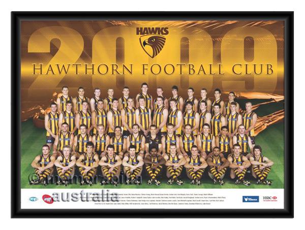 2009 Framed Team Poster Hawthorn Hawks