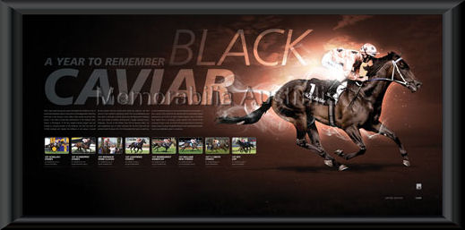 Black Caviar Lithograph Framed
