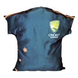 Cricket Cushion
