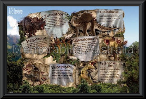 Dinosaur Facts Poster Framed