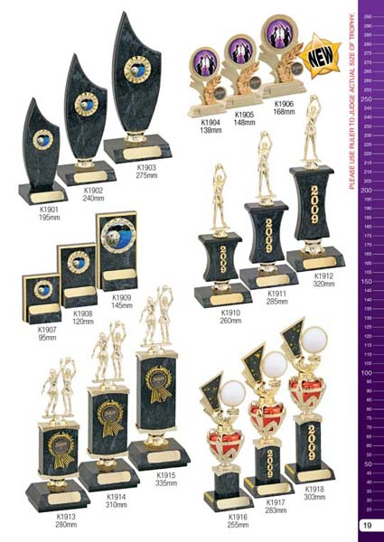 Netball Trophies 4