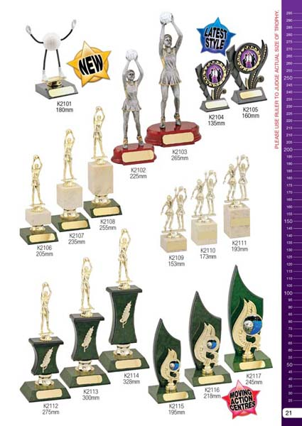 Netball Trophies 6