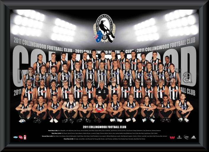 Collingwood Magpies Afl Aussie Rules Sports