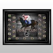 Black Caviar Racing Perfection signed lithograph