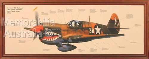 Warhawk Aviation Print