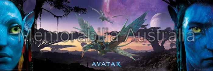 Avatar Panoramic Door Poster