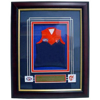 Demons Framed Mini Jersey