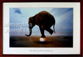 Elephant Balancing Print