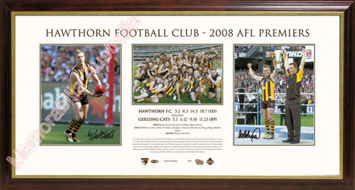 2008 Hawthorn Hawks Premiership Photo Piece