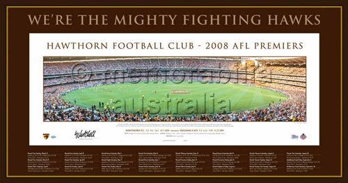 2008 Hawthorn Hawks Framed Premiership Panoramic