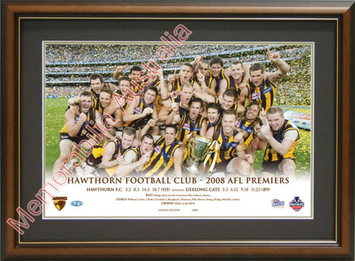 2008 Hawthorn Hawks Premiership Celebration Photo