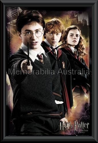 Harry Potter Half Blood Poster Framed