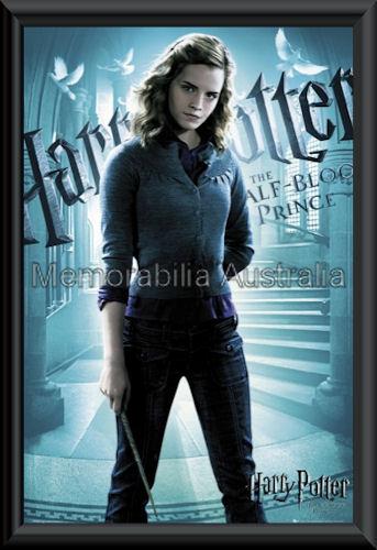 Harry Potter Mini Poster Framed