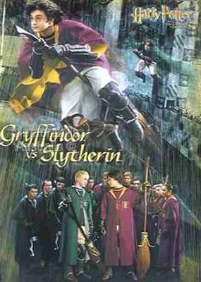 Gryffindor vs Slytherin Poster