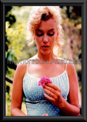 Marilyn Monroe Poster Framed
