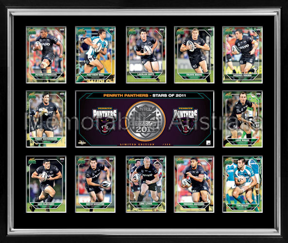 Panthers 2011 Medallion Print Framed