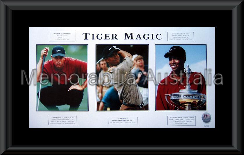 Tiger Woods Print Framed