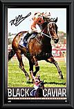 Black Caviar Retirement Signed Photo