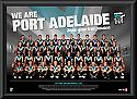 2013 Port Adelaide Power team frame