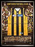 Hawthorn 2013 Team Signed Jersey