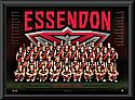Essendon Bombers 2017 Team Poster Framed