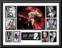 Lady Gaga Montage2