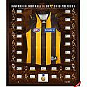 2013 HAWTHORN AFL PREMIERSHIP PREMIUM FRAMED TEAM SIGNED JERSEY