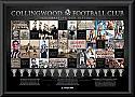 Collingwood Premiership History