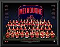 Melbourne Demons 2017 Team Poster Framed